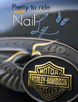 Portes ouvertes Harley Davidson 2013